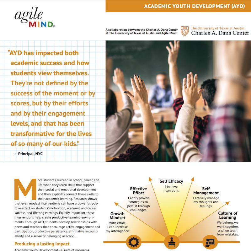 AYD Fact Sheet